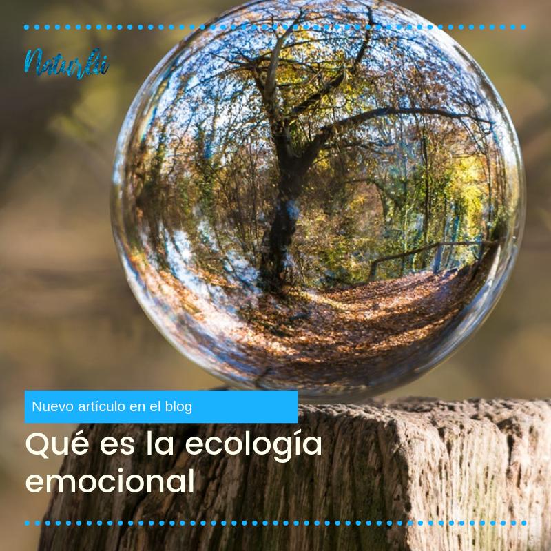 Qué es la ecología emocional