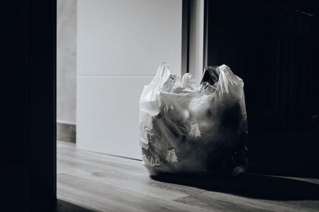 Hongos comeplásticos ¿son el futuro para acabar con los residuos?
