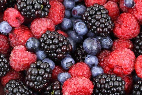 Un embalaje biodegradable y comestible que alarga el buen estado de la comida