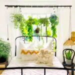 plantas habitacion sostenible