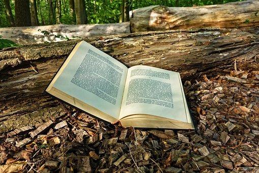 5 libros para adentrarse en el consumo responsable y la conservación del Planeta