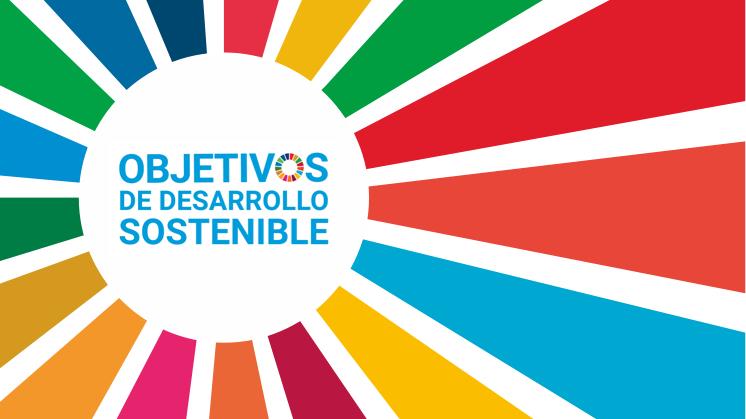 17 Objetivos para el Desarrollo Sostenible