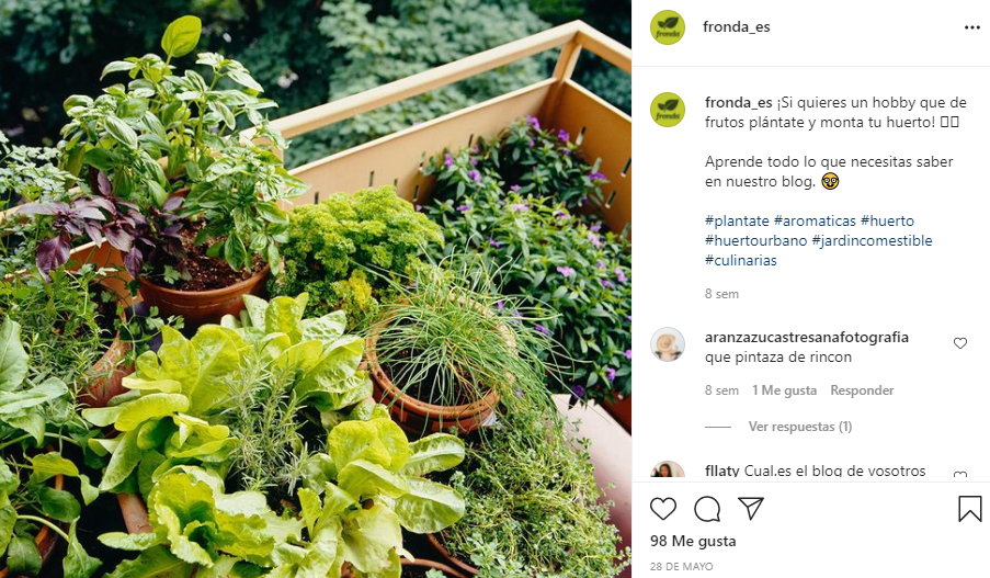 comprar plantas online